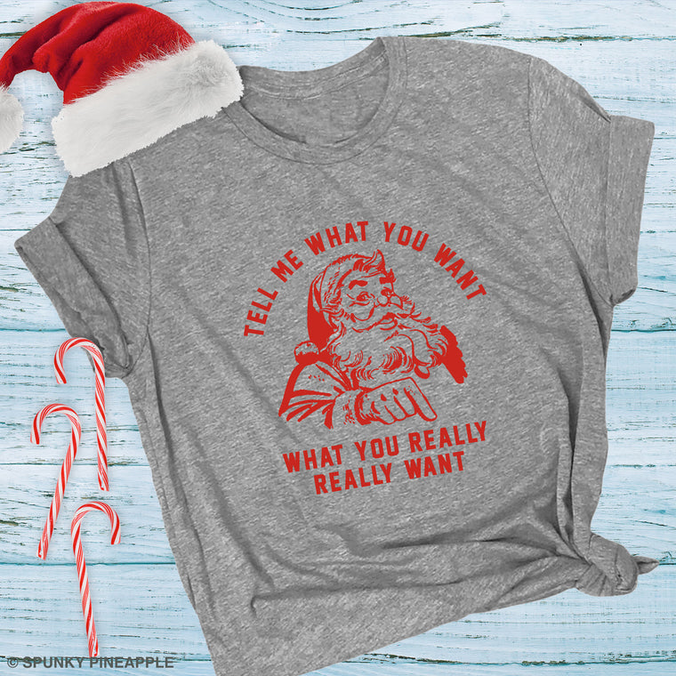 Tell Me What You Want What You Really Really Want Premium Unisex T-Shirt