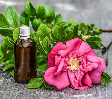 72 (Immediate) Ways for Humans to Benefit from Aromatherapy