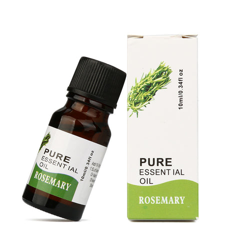 Rosemary Pure Essential Oil for Aromatherapy