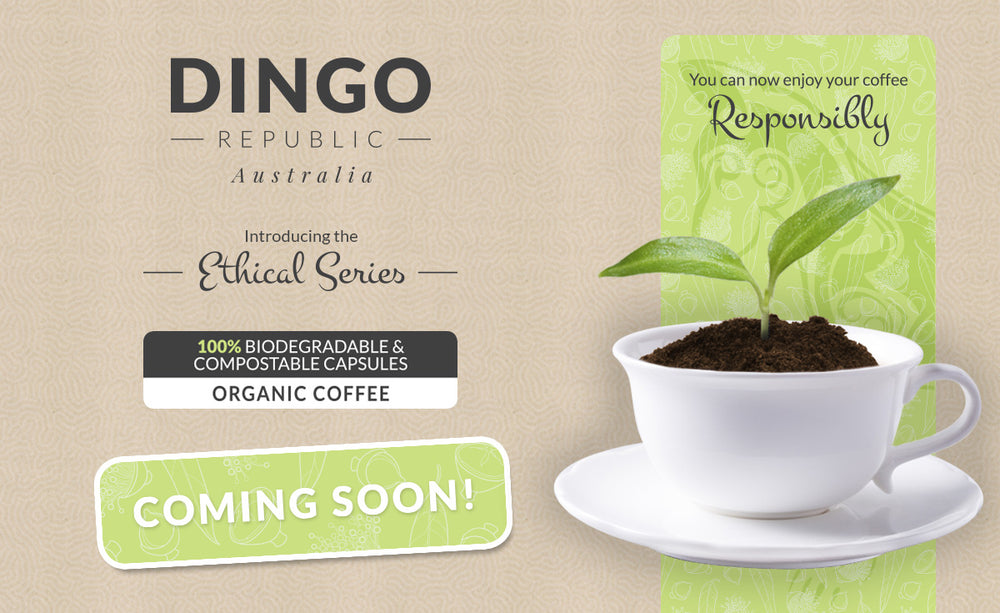 Available Now! New Dingo Republic Ethical Series