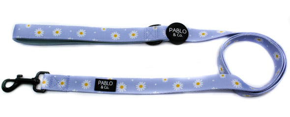 Blue Daisy: Dog Leash