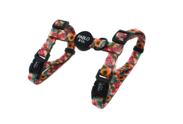 Floral Edit: Cat H Harness