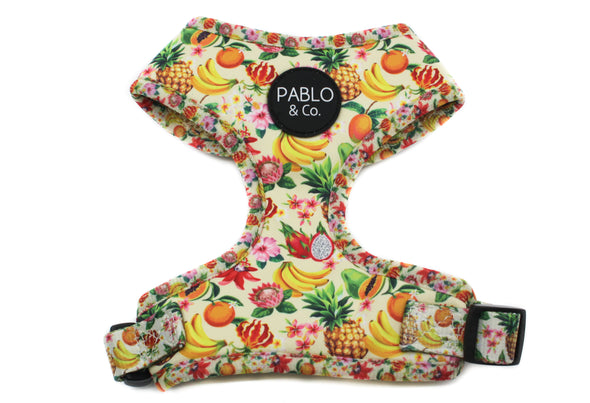 Fruity: Adjustable Harness