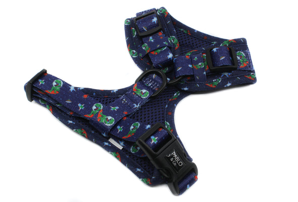 Space Dinos: Adjustable Harness