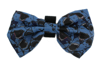Sharks: Bow Tie