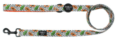 Papaya: Dog Leash