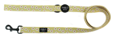 Yellow Daisy: Dog Leash