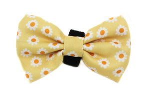 Yellow Daisy: Bow Tie