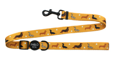 Dachshund Crew: ADJUSTABLE Dog Leash
