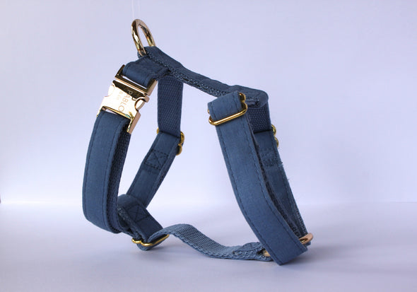 Blue Jean Harness