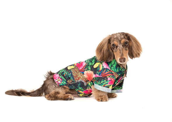 Tropical Jungle BBQ Dog Tee