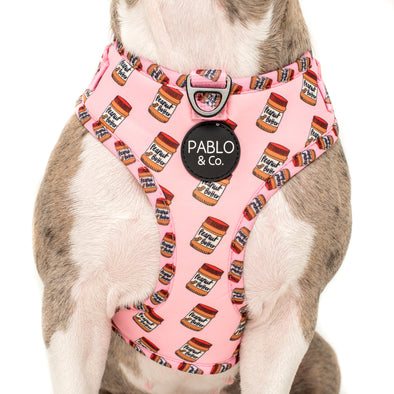 Peanut Butter: Adjustable Harness