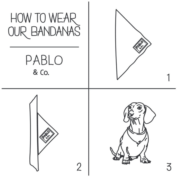 Rainbows - Bandana