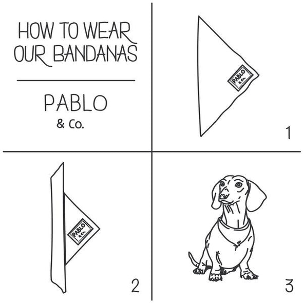Burn Book - Bandana