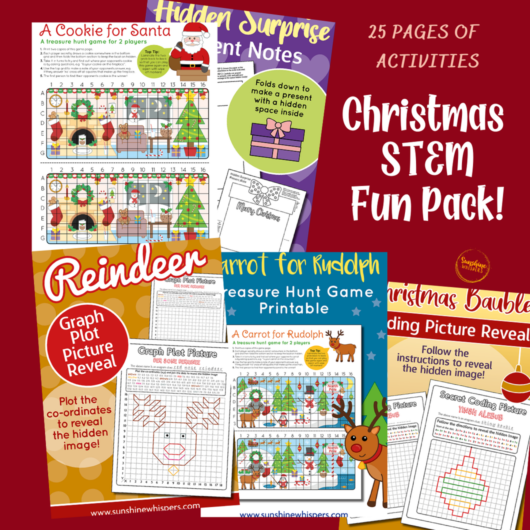 Christmas STEM Fun Pack!