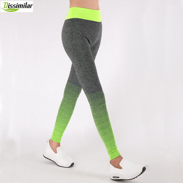 DISSIMILAR Fitness Ombre  Pants Activewear Slimming Leggings High Rise