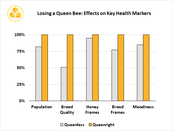 Losing a Queen Bee: Effects On Key Health Markers
