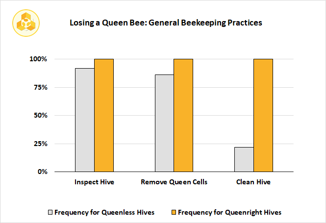 Losing a Queen Bee: General Beekeeping Practices