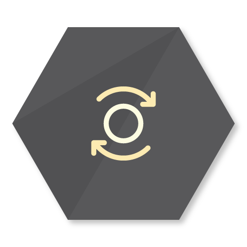 icon representing the data redirects feature of the buzzbox app