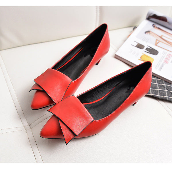 Shoes-2017 ladies fashion elegant low heels