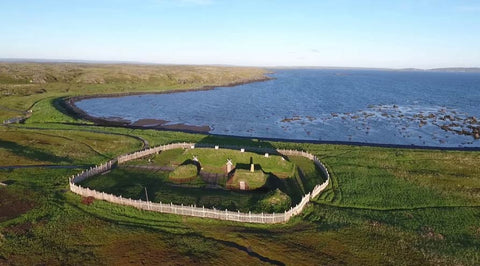 Viking settlement in L'Anse aux Meadows