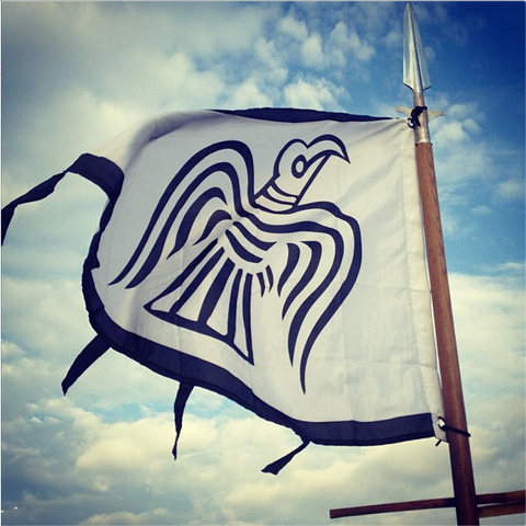 Image of Viking raven flag