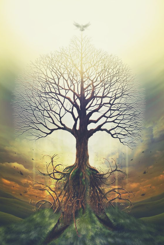 Image of Yggdrasil Tree