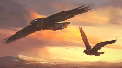 The flying Viking Ravens Odin's Ravens Huginn and Muninn. Odin's message to us with Huginn and Muninn