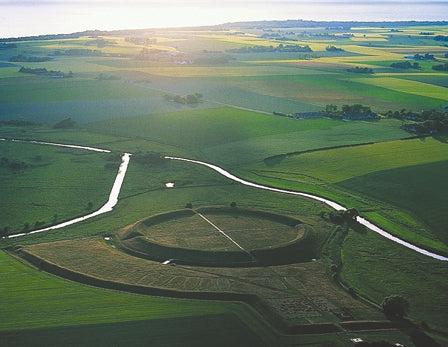 Viking trelleborg was a type of Viking fort in a ring-shaped form
