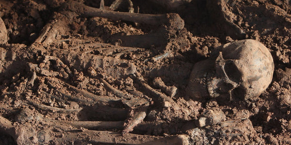 Mass grave in Oxford consisted of the Norsemen skeletons