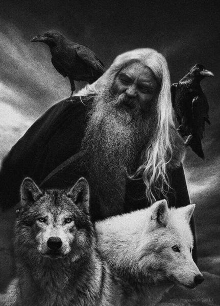Odin's Wolves and Ravens