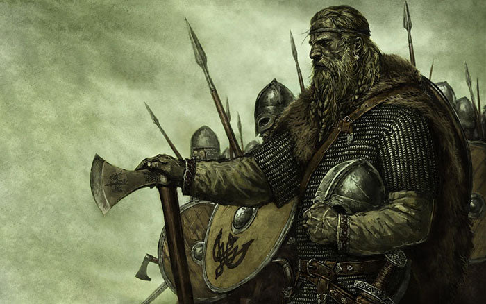 Image of the Viking warriors