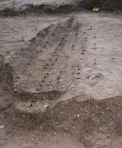 Salme Viking ship was excavated