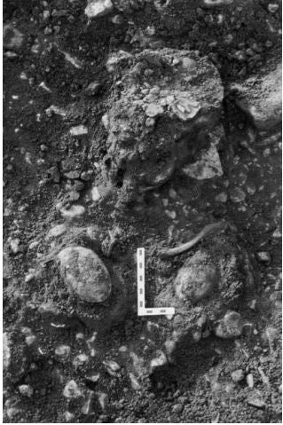 Viking woman remains inside a Viking burial grave