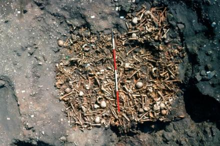 Viking Mass Grave in Repton