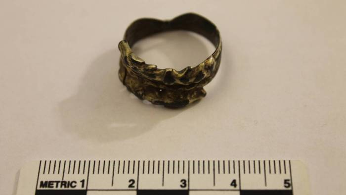 Image of historical Viking ring in Goa