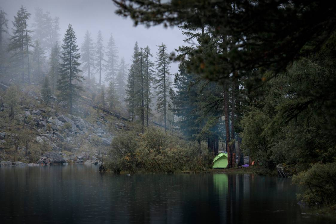 HIdden campsite in a forest in the fog