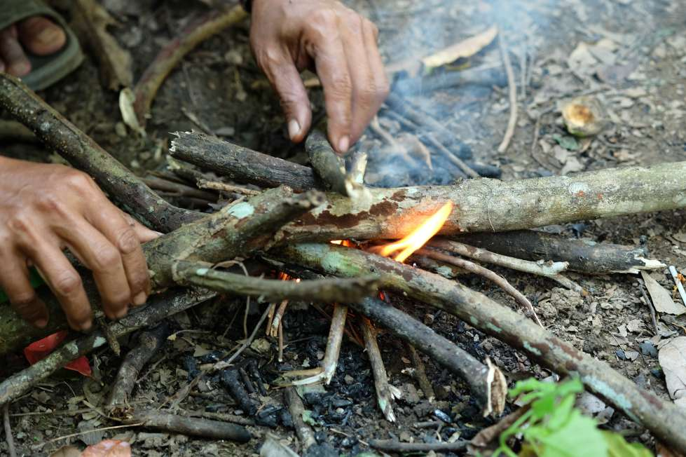 Fire kindling with bark and smaller sticks
