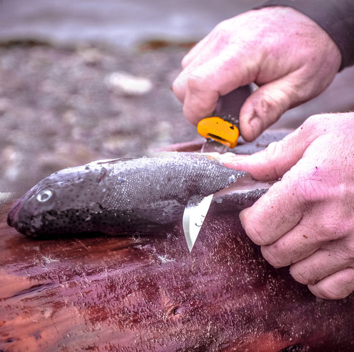 A person filleting a fish with a Morakniv Companion knife. The fish is laid upond a tree log and the fishermans hands are covered in dirt and filth.
