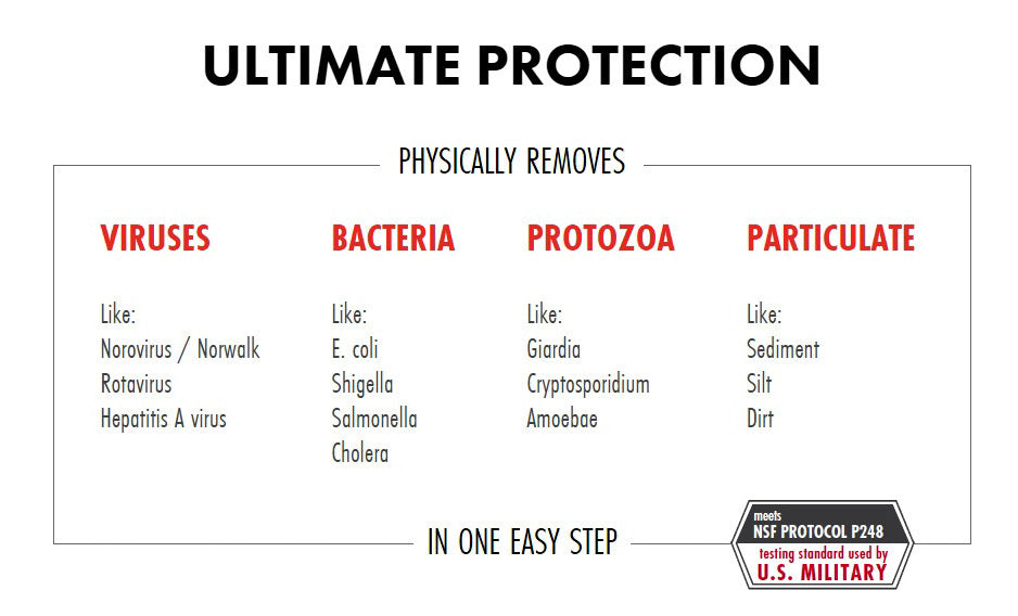 Chart of viruses, bacteria, protozoa, and particulate that can be removed from a water souce using the MSR Guardian water purifying system. Norovirus, rotavirus, hepatitis A, e. coli, shigella, salmonella, cholera, giardia, cryptosporidium, amoeboae, sediments, silt, and dirt!