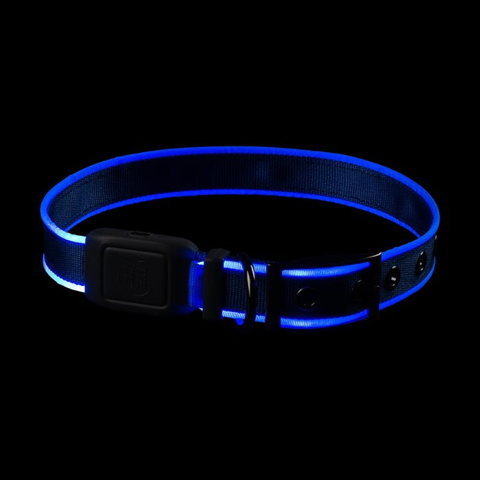 Nite-Ize Rechargeable Water Resistant LED Dog Collar - Glow or Flash modes