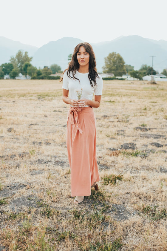 Tori Skirt In Apricot - Dress