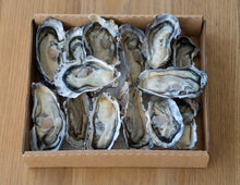 One Dozen Whole Shell Oysters (Live)