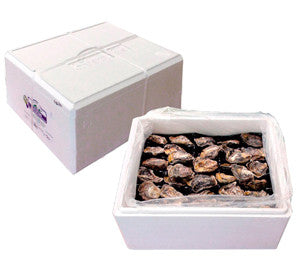 Party Pack - 10 Dozen Large Oysters