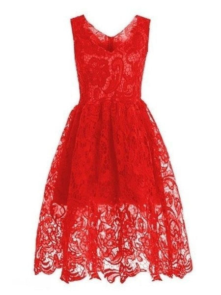 Casual Vintage Hollow Out Plain Deep V-Neck Lace Skater Dress