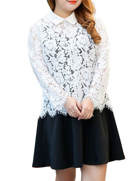 Casual Plus Size Doll Collar Lace Hollow Out Blouse And Skater Dress