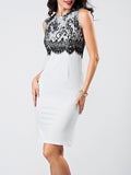 ByChicStyle Round Neck Lace Patchwork Bodycon-dress - Bychicstyle.com