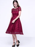 ByChicStyle Decorative Buttons Hollow Out Sexy Lace Skater Dress - Bychicstyle.com