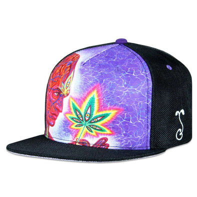 Alex Grey Cannabis Sutra 2 Black