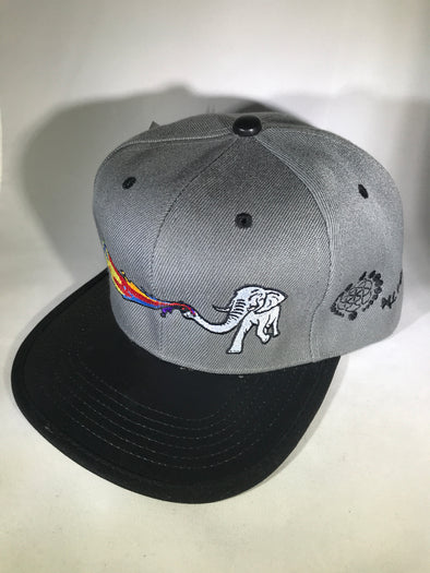 One of a Kind Snapback Hat